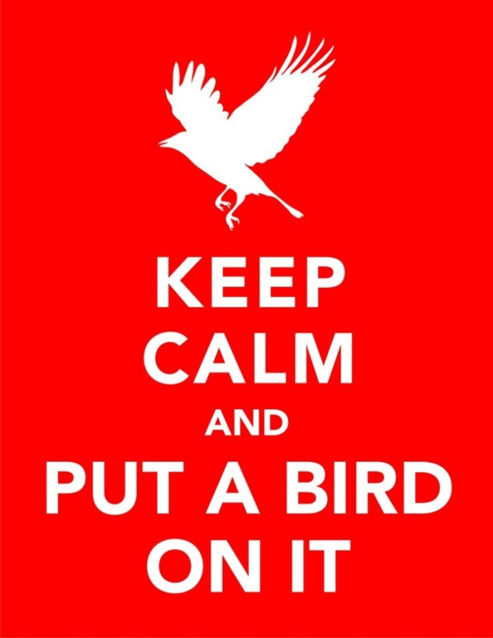 keep_calm_and_put_a_bird_on_it_by_redraspus-d3al7hz-791x1024